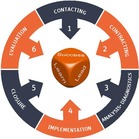 COMMITIS-Coaching Process